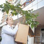 «Первая очередь». Москвичи вспоминают, как они переезжали из пятиэтажек