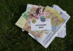 Субсидия на ЖКУ: кому и на какие услуги предоставляется компенсация в Украине в 2017 году