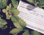 ЖКУ в Виннице: сколько потребители заплатят за коммунальные услуги в отопительном сезоне