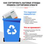 Как правильно сортировать бытовые отходы из бумаги: инфографика