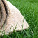 Биомат «Сухой газон»: особенности использования и преимущества